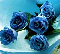 超级美丽的蓝色妖姬玫瑰花饰制作方法