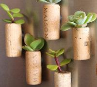 葡萄酒瓶塞DIY袖珍软木多肉植物冰箱贴
