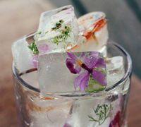 各种水果DIY最漂亮的冰块 创意冰块的制作方法