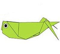 蝗虫/蚱蜢的折法 昆虫折纸图解