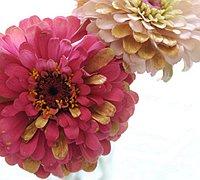 鲜花diy手工 一束镀金的鲜花制作图解