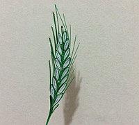衍纸麦穗手工制作方法