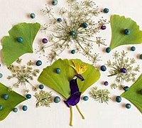 花瓣与叶子组成的创意拼贴画作品
