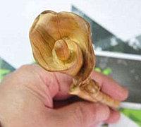 金丝楠木边角料雕刻马蹄莲全过程
