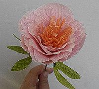 皱纹纸牡丹花的做法