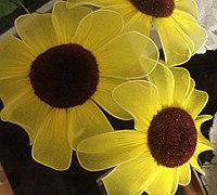 简单的向日葵丝网花制作方法