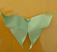 燕尾蝶的折法 折纸蝴蝶教程