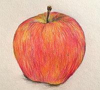 圣诞平安果的画法 彩铅手绘苹果教程