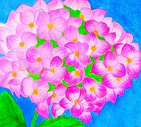 彩铅手绘花朵 绣球花彩铅教程