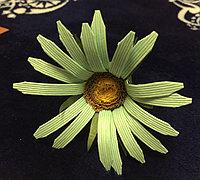 纸藤制作漂亮的野菊花