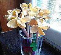 开心果壳制作一束好看的小花