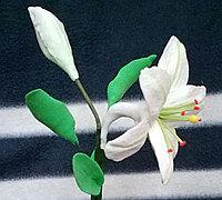 用超轻粘土做花 超轻粘土百合花的做法