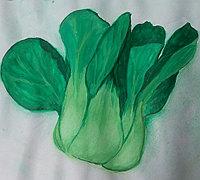 水彩小白菜的手绘教程