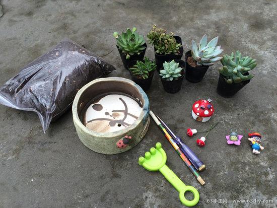多肉植物盆栽diy图片