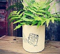 卷纸筒废物利用制作创意花瓶