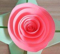 超级简单的纸玫瑰花的折法教程