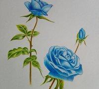 蓝色妖姬彩铅画涂鸦教程