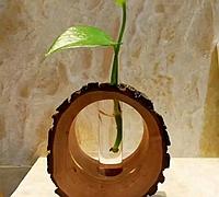 木桩diy创意小盆栽
